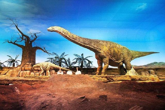 Dinos konnten Körperwärme mit Stoffwechsel regulieren