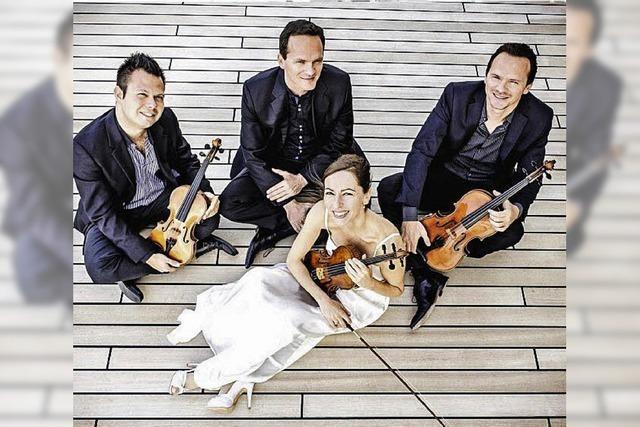 Das Casal Quartett in Waldshut