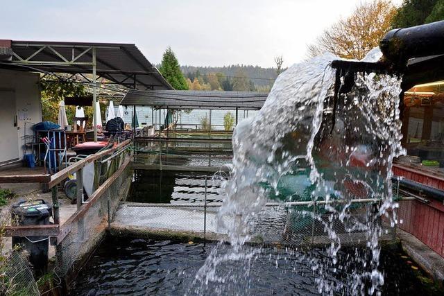 Fischerheim kommt an den Kanal