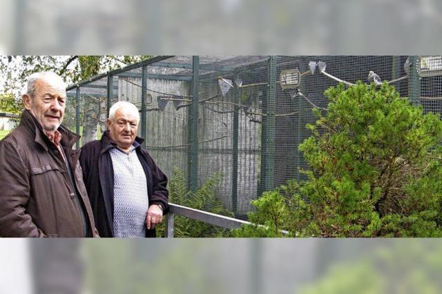Zukunft der Vogelvoliere im Kurpark ist ungewiss