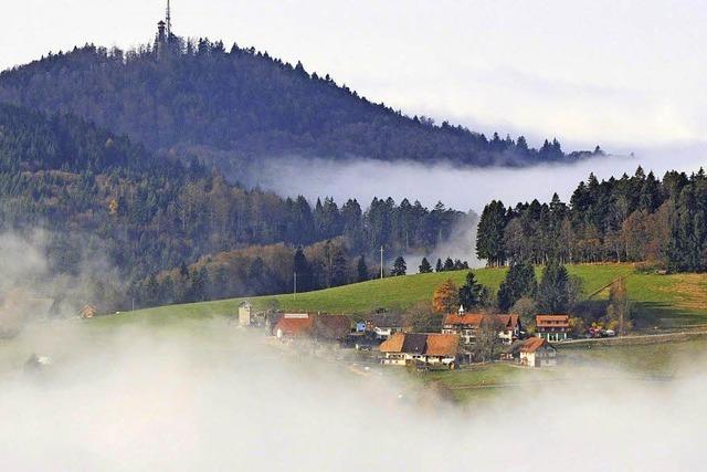 Biosphärengebiet wird für Schopfheim konkret