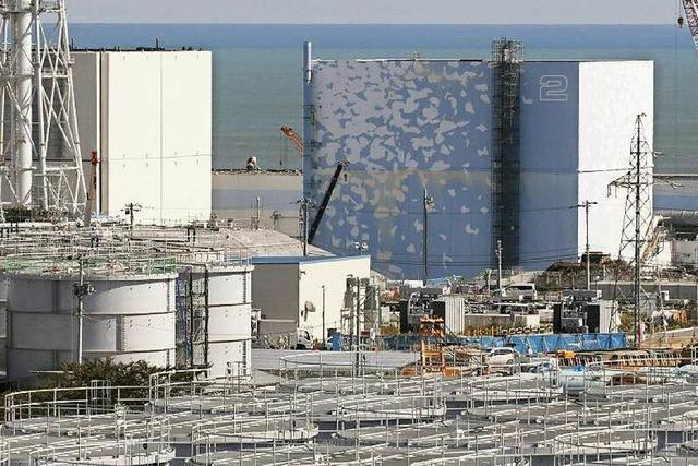 Fukushima: Japan nimmt zweiten Reaktor in Betrieb