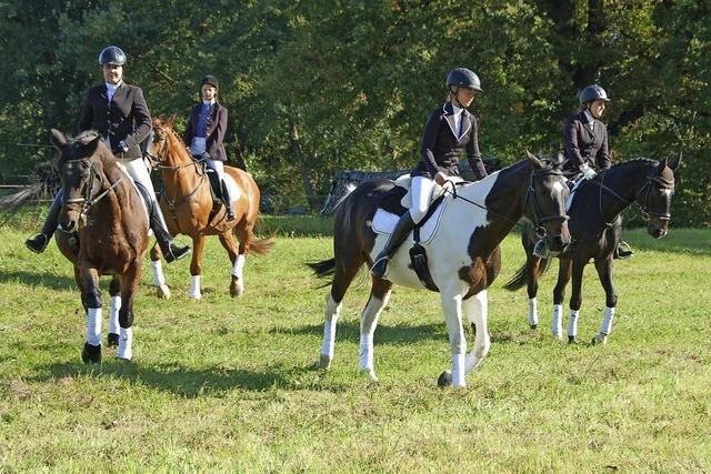 Pferdeliebhaber feiern Jubiläum