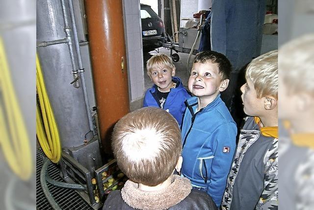 Kinder besuchen die Mosterei