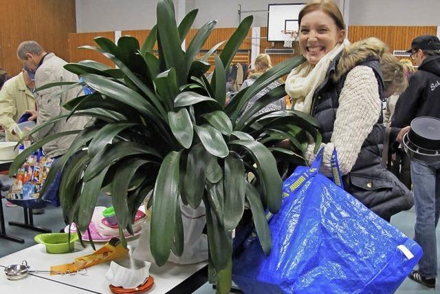 Auch Zimmerpflanzen finden Abnehmer