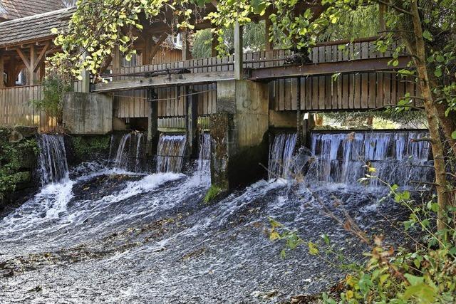 Eine Fischtreppe bei der Glatz-Mühle