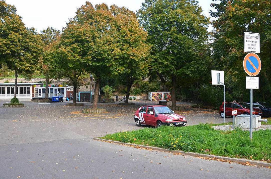 Wo sich jetzt noch Bäume und Parkplätz...ine neue Mehrzweckhalle gebaut werden.  | Foto: Christina Hohwieler