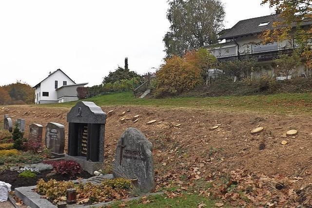 Fichten beim Friedhof gefällt