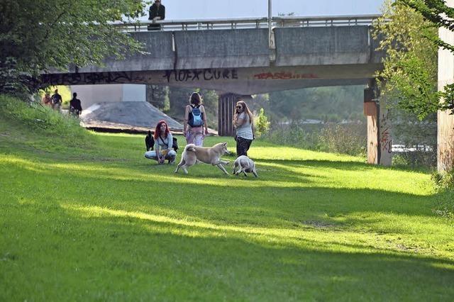 IBA Basel startet Wettberwerb zum Landschaftspark Wiese
