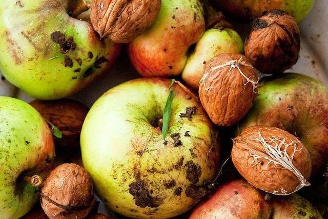 Vegetarier, Veganer oder Rohköstler: Wer isst was?