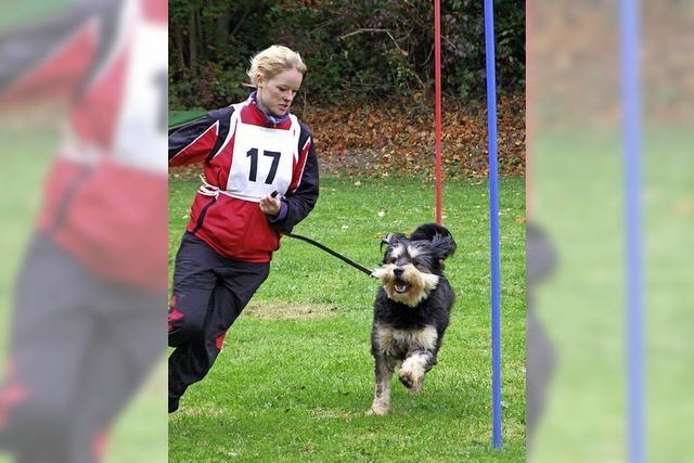 Spaß für Mensch und Hund