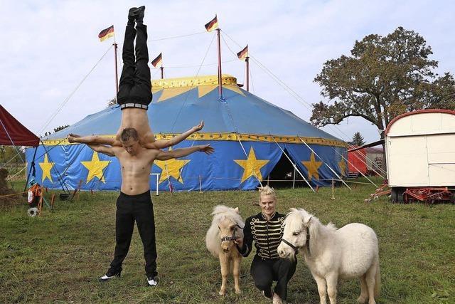 Der Zirkus WEisheit