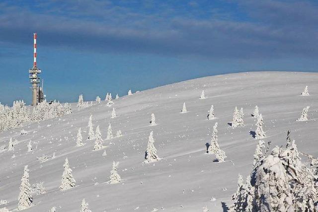 Schwarzwälder Gerangel ums Biosphärengebiet
