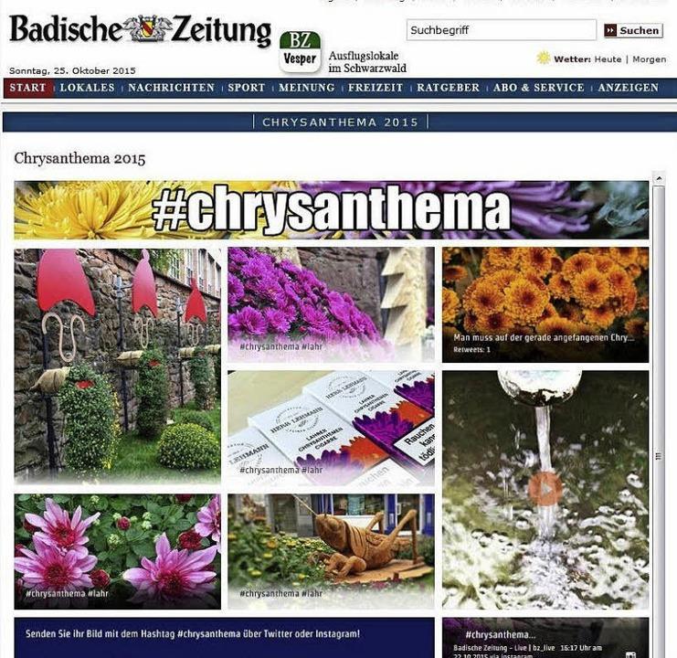 … und die neue BZ-Fototapete.  | Foto: Christian Kramberg