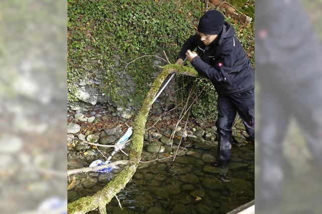 Abfall landet aus Achtlosigkeit am Rheinufer