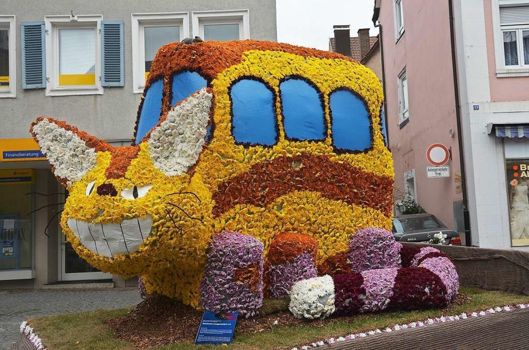 Ein Chrysanthema-Katzenbus    Foto: Christian  Kramberg