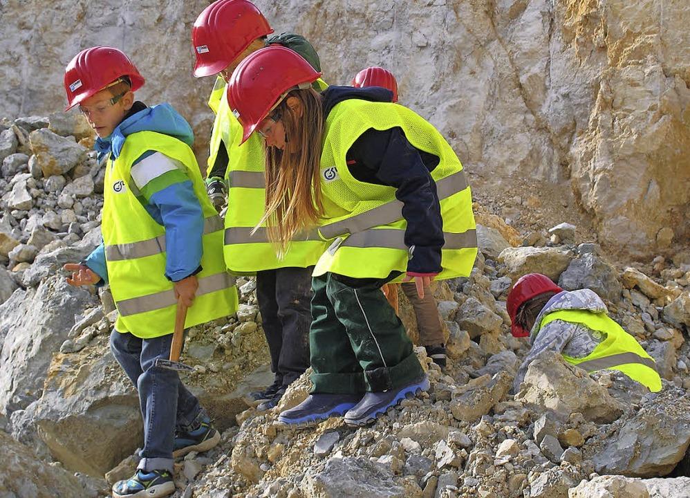Kinder der Hector Akademie im Kalkwerk-Steinbruch -der Geologie auf der Spur  | Foto: Jutta Schütz