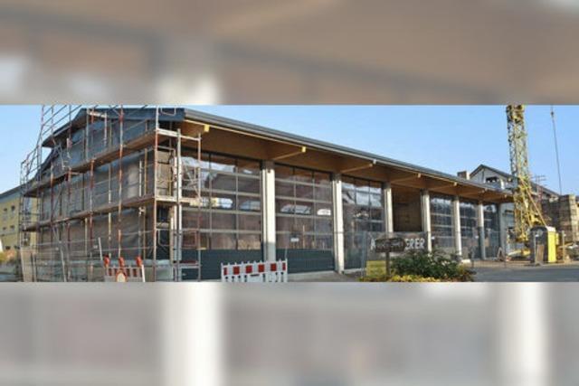 Kritik im Rat am teuren Wiederaufbau