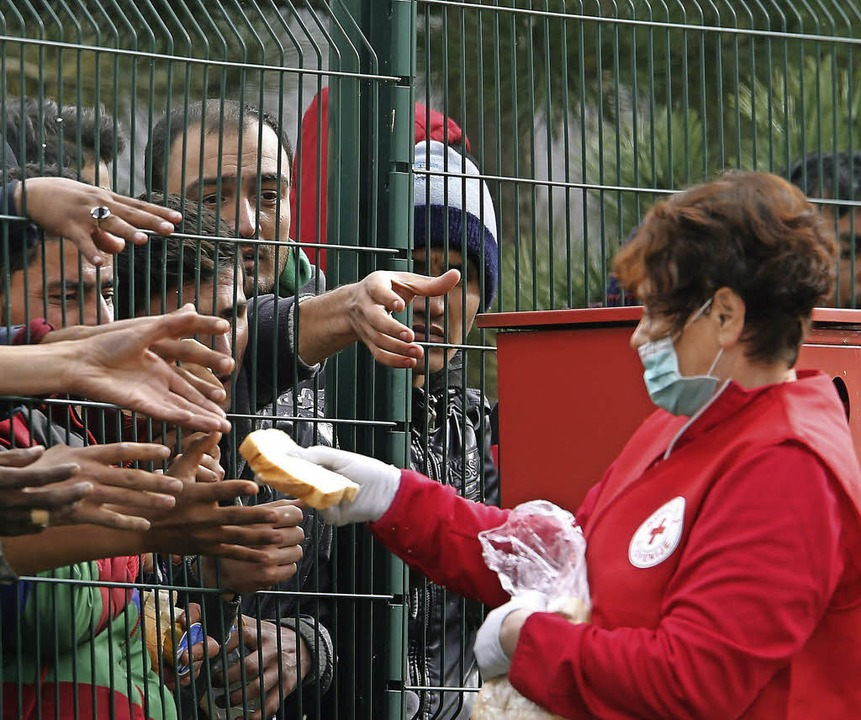 Eine Rotkreuz-Mitarbeiterin verteilt Brot.    Foto: dpa