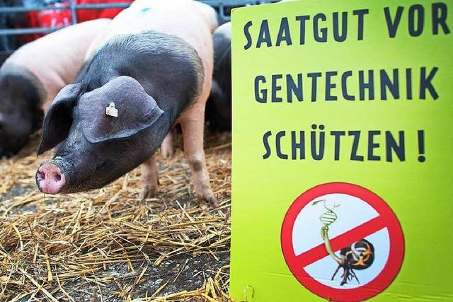 EU will Regeln für Import von Gen-Lebensmitteln