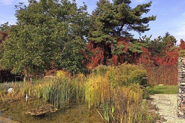 Bodenständige Schlachtfeste haben im Herbst Tradition in Trebbin