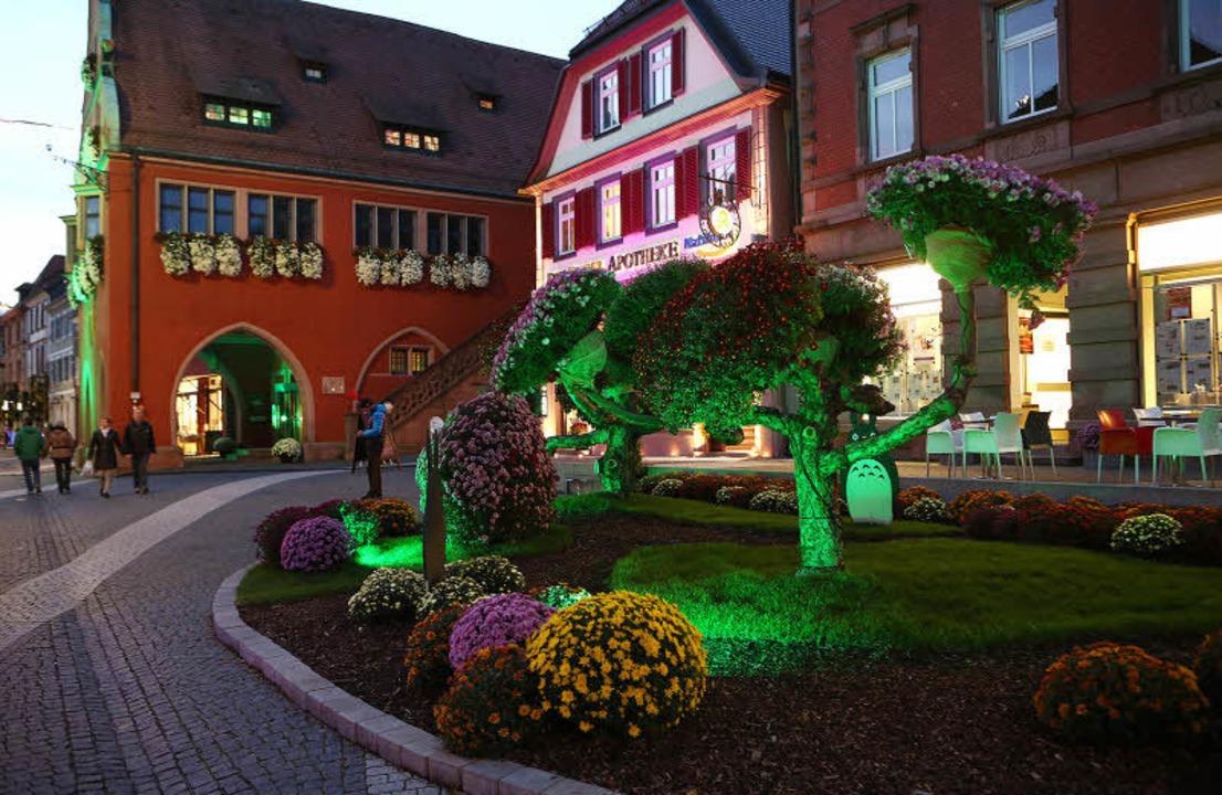 Wenn Blumen einmal im künstlichen Lich...hlen: Urteilsplatz mit Alten Rathaus.   | Foto: christoph breithaupt