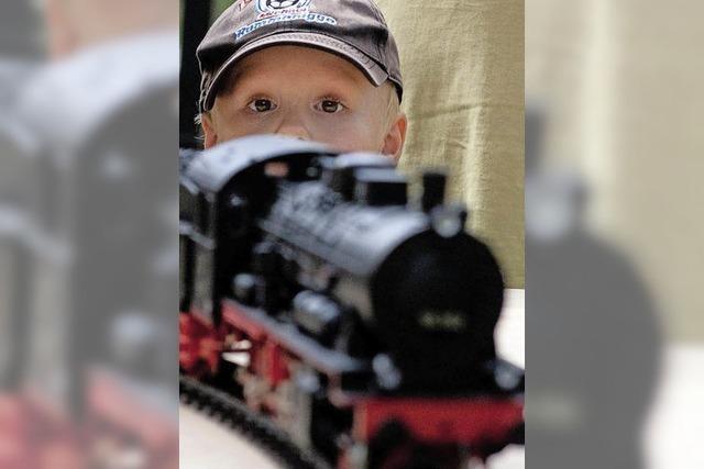 Eisenbahnen im Kleinformat