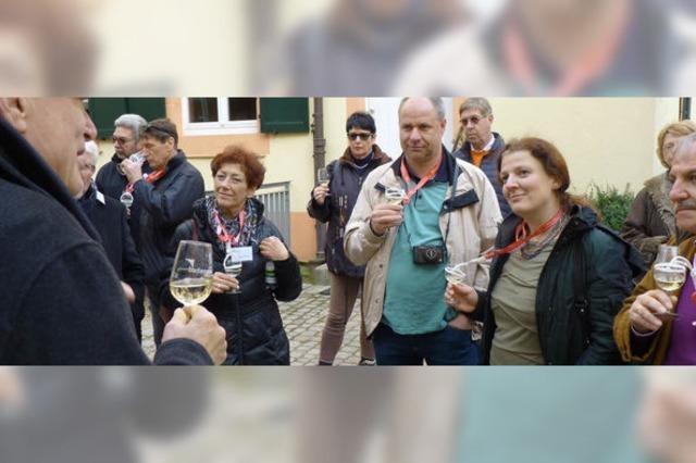Einblicke in die Weinstadt