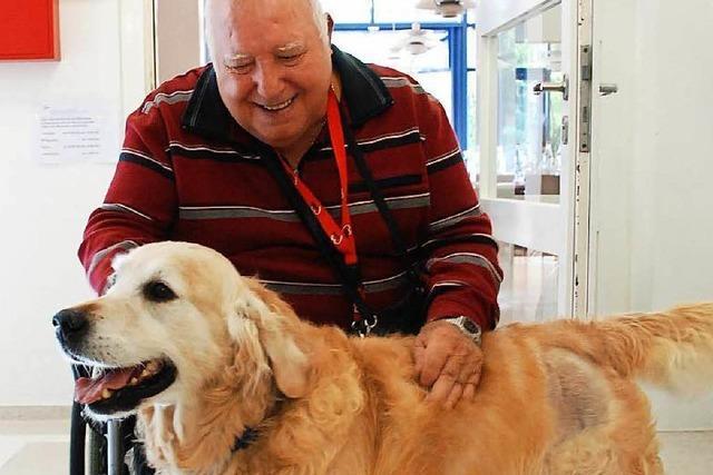 Warum Tiere in Seniorenheimen so beliebt sind