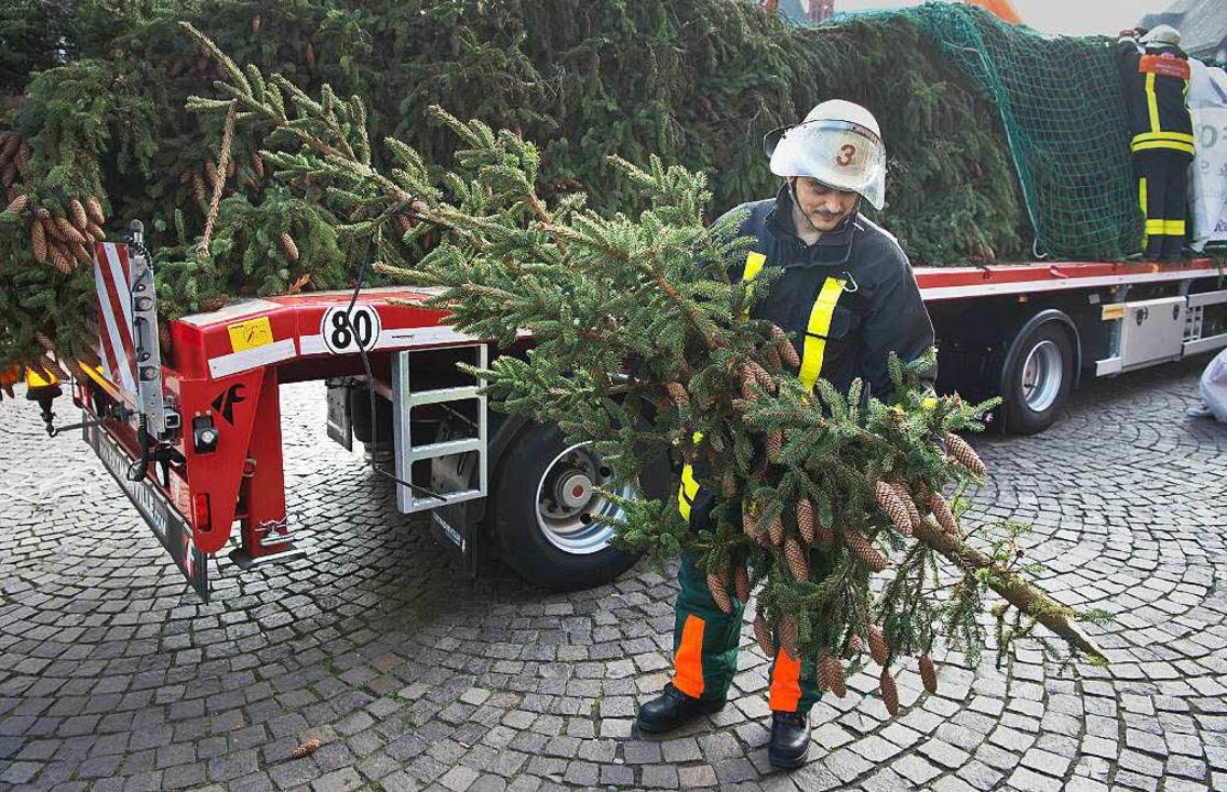Zwei Meter fehlen dem Baum aus dem Oberrieder Wald jetzt.  | Foto: dpa