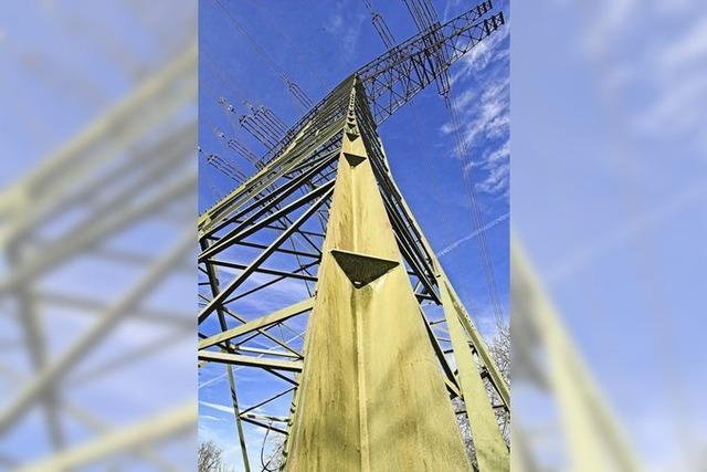 Transnet BW erneuert Stromtrasse