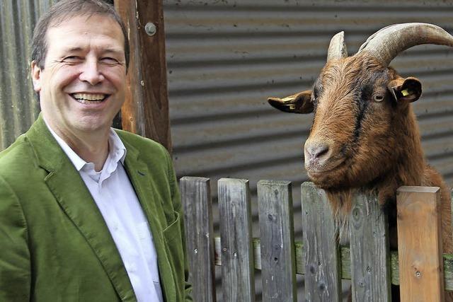 Tierpension ist sehr gefragt - Tierheim für Sommer 2016 teilweise ausgebucht