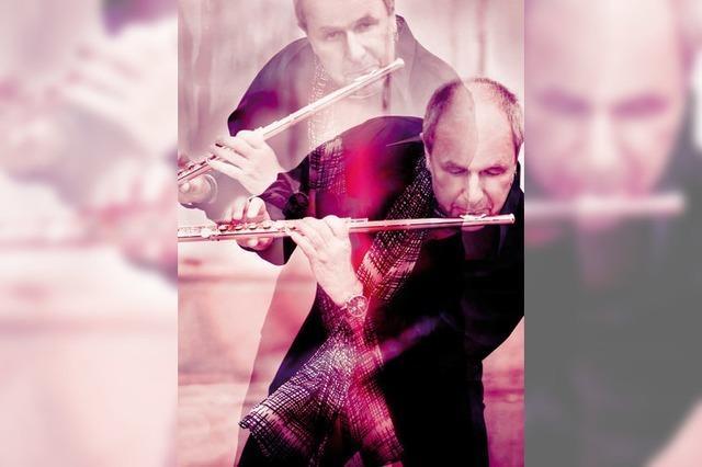 Jazz oderSoul, Rock und Pop, New Age und Meditation mit Lenny Mac Dowell in Waldshut-Tiengen