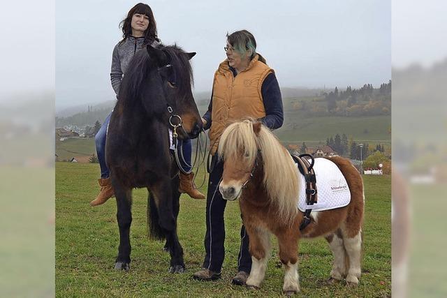 Wenn Pferde helfen, die Sorgen zu vergessen