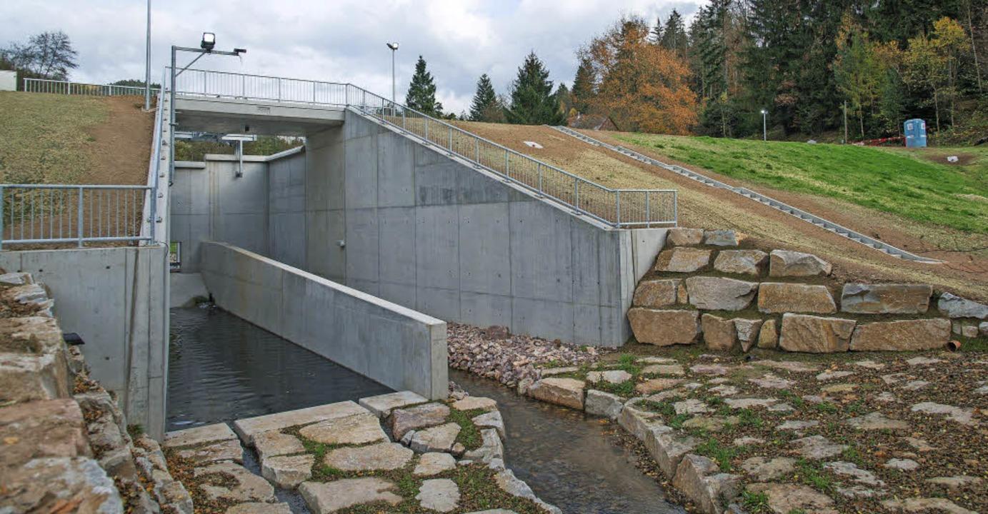 Das Becken Breitmatt macht den Hochwasserschutz komplett.   | Foto: olaf Michel