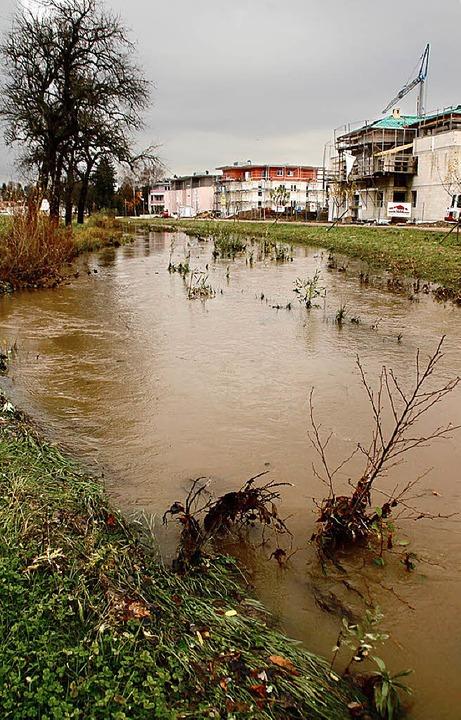 Der ausgebaute Ettenbach nimmt 2012 das Wasser auf.   | Foto: eri