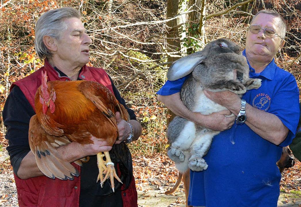 Absolute Prachtkerle: Toni Pertler mit Hahn und Manfred Beyer mit Kaninchen   | Foto: Heinz Vollmar