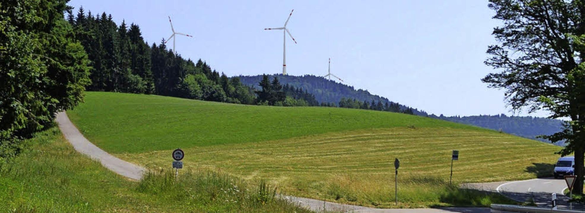 Der Rohrenkopf mit Windkraftanlagen – eine Simulation    | Foto: Lenné3D