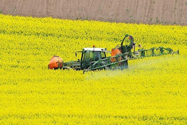 EU-Behörde verteidigt das Pflanzengift Glyphosat