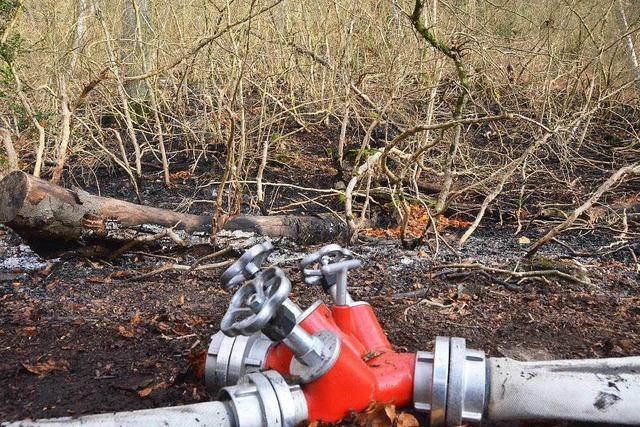 Anhaltende Trockenheit: Waldstück brennt in Wyhlen
