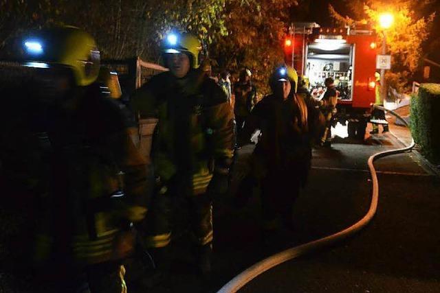 Feuerwehr löscht großen Waldbrand bei Wyhlen