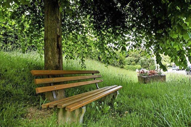 Im Frühjahr gibt es weitere Ruhebänke an 25 Standorten