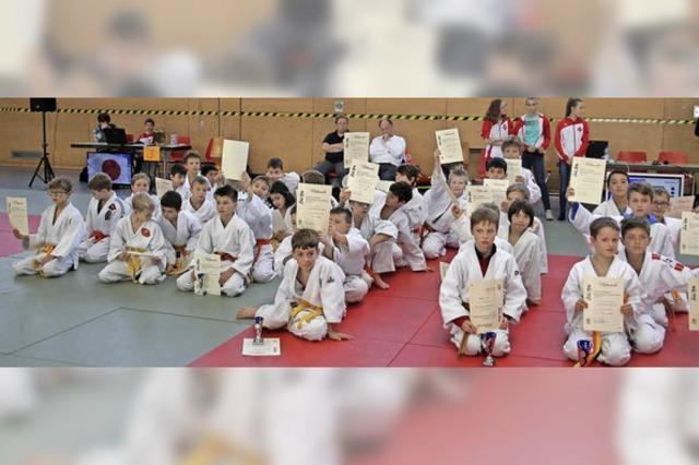 Junge Judoka