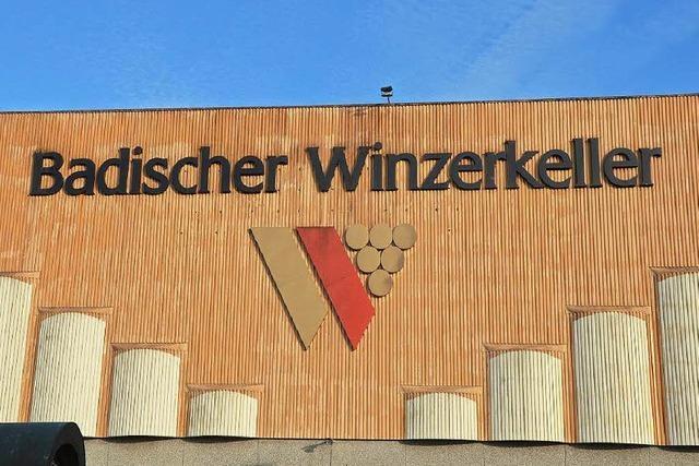 Peter Schuster wird neuer Chef beim Badischen Winzerkeller