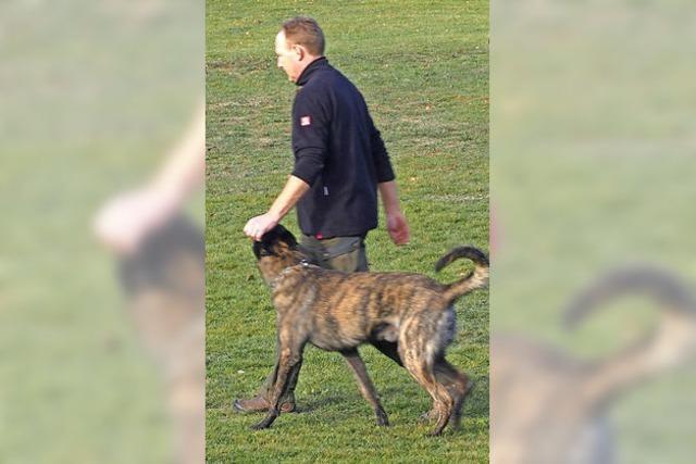 Prüfung für Hunde, für Herrchen und Frauchen