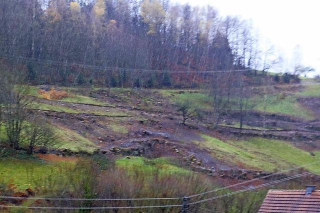 Drei Hektar am Winterberg sind nun wieder offen