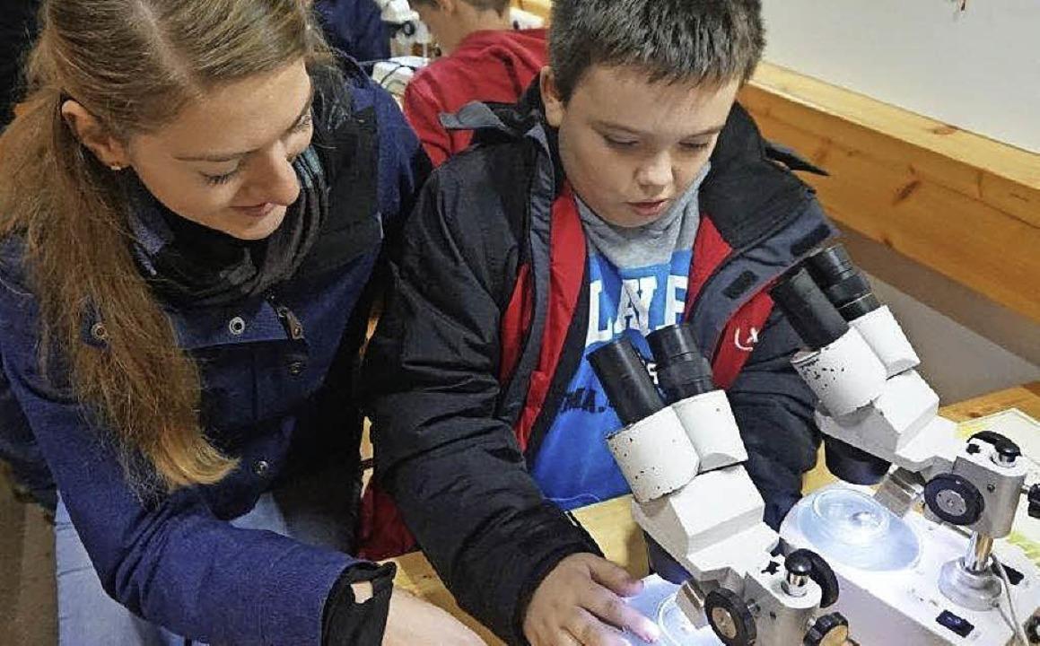 Das Ökomobil ermöglicht Blicke durch das Mikroskop.     Foto: Anne freyer