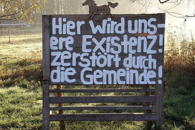 Pferde oder Flüchtlinge: Warum March über eine Weide streitet