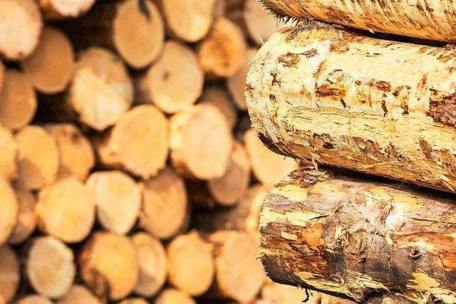 In Lörrach entsteht das höchste Holzhaus im Südwesten