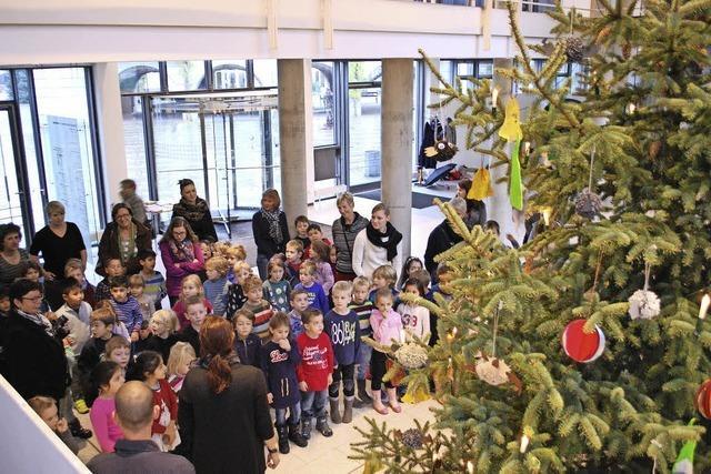 Weihnachtsschmuck fürs Rathaus